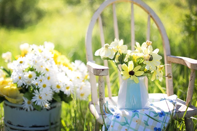 ガーデニングのお手伝い~初心者さんのための園芸サイト